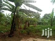 Two Acres Of Land For Sale In Kira Gayaza Road At 64m   Land & Plots For Sale for sale in Central Region, Kampala