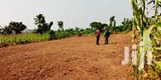 Plot 50 By 50 | Land & Plots For Sale for sale in Central Region, Luweero