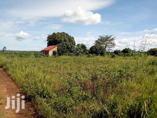 Archive: Land 15 Decimals in Busika-Vumba for Sale
