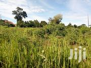40decimals in Busika- Zirobwe Road Land for Sale | Land & Plots For Sale for sale in Central Region, Kampala
