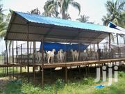 Goat's House Construction | Pet's Accessories for sale in Central Region, Kampala