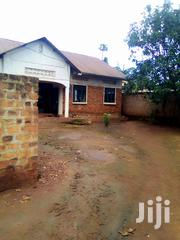 Focus Property Experts | Houses & Apartments For Sale for sale in Central Region, Kampala