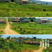 Gayaza Near St Juliana 50by10 at 25m | Land & Plots For Sale for sale in Central Region, Kampala