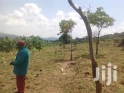 5acres for Sale in Busunju,Hoima Rd Asking 10m Per Acre With Title | Land & Plots For Sale for sale in Central Region, Kampala