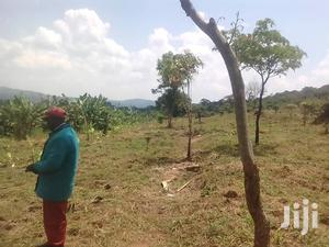 5acres for Sale in Busunju,Hoima Rd Asking 10m Per Acre With Title