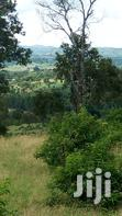 Vast Virgin Land for Sale | Land & Plots For Sale for sale in Kamwenge, Western Region, Uganda