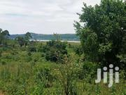 Am Selling 50 Acres In Nkokonjeru Bulutwe .Viewing Lake Victoria | Land & Plots For Sale for sale in Central Region, Kampala