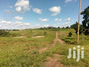Plots for Sale at Wakiso Namayumba Town Just a Few Meters From Tarmac | Land & Plots For Sale for sale in Central Region, Kampala