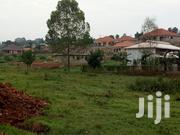 50x100 Plot for Sale at Kira Nsansa 15m | Land & Plots For Sale for sale in Central Region, Kampala
