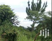 Land For Sale In Bukerere 50*100, 100*100 | Land & Plots For Sale for sale in Central Region, Mukono