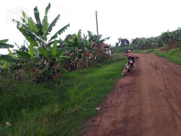 Archive: Plot Of Land In Salaama Munyonyo Road For Sale