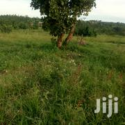 Land At Wakiso For Sale | Land & Plots For Sale for sale in Central Region, Kampala