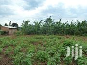 Land On Sale!! Gayaza Rd Namulonge 15m 50x100ft 2plots Available | Land & Plots For Sale for sale in Central Region, Kampala