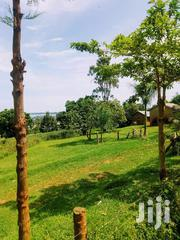 Landtouching the Lake for Sell | Land & Plots For Sale for sale in Central Region, Wakiso