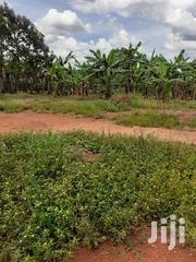 42 Decimals for Sale in Kyanja at 380m, Almost on the Main Road. | Land & Plots For Sale for sale in Central Region, Kampala