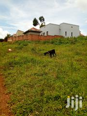 Land In Kungu Najjera For Sale | Land & Plots For Sale for sale in Central Region, Kampala