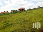 Land in Kasangati for Sale 60/100ft | Land & Plots For Sale for sale in Central Region, Kampala