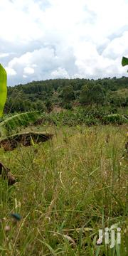 Land For Sale In Busika 15 Decimals | Land & Plots For Sale for sale in Central Region, Kampala