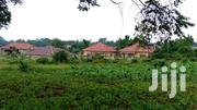 Wakiso Town 100ftby100ft/25 Decimals For Sale At 40millions | Land & Plots For Sale for sale in Central Region, Wakiso