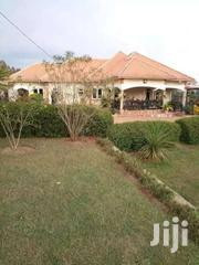 Create The Ideal Place 4bedroom 3baths On 50decs In Matugga At 600M | Houses & Apartments For Sale for sale in Central Region, Kampala