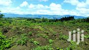 10 Acres of Fertile Land for Sale in Geme, Fort Portal. | Land & Plots For Sale for sale in Western Region, Kabalore