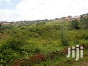Kira-Green Hill 50/100ft for Sale | Land & Plots For Sale for sale in Central Region, Kampala