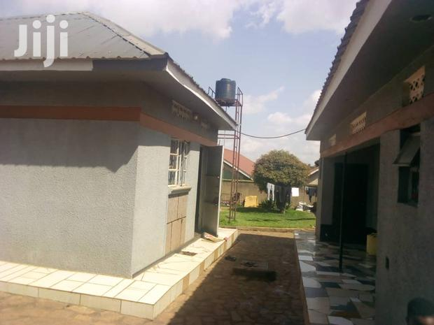 Archive: Very Big Bangalore on Quick Sale in Kiwature With Private Mile Title