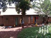 3 Units House for Sale in Kibili Busabala Road | Houses & Apartments For Sale for sale in Central Region, Kampala