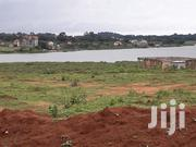 New Olives Estate Nkumba 50x100 at 45m | Land & Plots For Sale for sale in Central Region, Wakiso