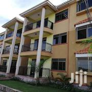 Kansanga 2bedroom Apartments for Rent at Only 600k | Houses & Apartments For Rent for sale in Central Region, Kampala