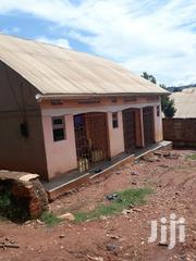 A House at Gangu Busabala Road in an Organised Environment With1 Bedro   Houses & Apartments For Sale for sale in Central Region, Kampala