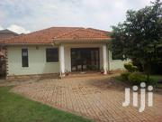 A Four Bedrooms Standalone for Rent in Naalya | Houses & Apartments For Rent for sale in Central Region, Kampala