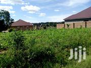 50 by 100 Plot for Sale in Garuga, Bukaaya Road Overlooking the Lake | Land & Plots For Sale for sale in Central Region, Wakiso