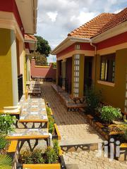 Beautiful Single Room Self-Contained for Rent in Kiwatule Najeera   Houses & Apartments For Rent for sale in Central Region, Kampala