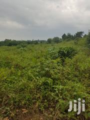 Suitable for Faming | Land & Plots For Sale for sale in Central Region, Luweero