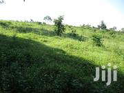 50ft X 100ft Plots for Sale at Bujowali Njeru Municipality | Land & Plots For Sale for sale in Eastern Region, Jinja