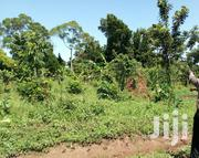 Fertile Land for Farming on Discount | Land & Plots For Sale for sale in Central Region, Luweero
