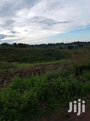 Come One Come All For Inspection | Land & Plots For Sale for sale in Western Region, Mbarara