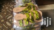 Casual Flat Sandles | Shoes for sale in Central Region, Kampala