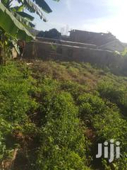 Plot 50ft/100ft In Buziga Near Sk Mbugas Crib Asking Price 130m | Land & Plots For Sale for sale in Central Region, Kampala