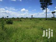 650 Acre Private Mailo Land in Kayunga | Land & Plots For Sale for sale in Central Region, Kayunga