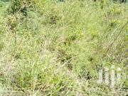 Land for Sale in Namugongo-Jogo | Land & Plots For Sale for sale in Central Region, Kampala