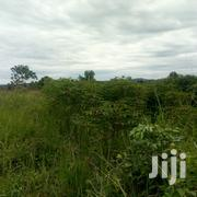 Namugongo-Jjogo 50/100ft for Sale | Land & Plots For Sale for sale in Central Region, Kampala