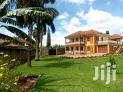 Six Bedrooms Duplex Standalone House for Rent in Ntinda | Houses & Apartments For Rent for sale in Central Region, Kampala