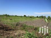 200 Acres of Titled Land for Sale at Kamuli Namasagali | Land & Plots For Sale for sale in Eastern Region, Jinja