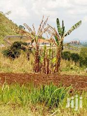Land For Sale In Hoima 100*100ft So Close To Twn At 21m | Land & Plots For Sale for sale in Western Region, Hoima