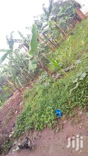30 Decimals of Land for Sale | Land & Plots For Sale for sale in Central Region, Kampala