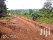 Mine Is 50x100 at 25m (Milo Land) in Wakiso Town Council. | Land & Plots For Sale for sale in Central Region, Kampala