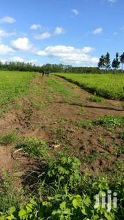 Mukono-titled Plots At 16M | Land & Plots For Sale for sale in Central Region, Mukono