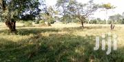 7 Acres of Land for Sale | Land & Plots For Sale for sale in Eastern Region, Iganga